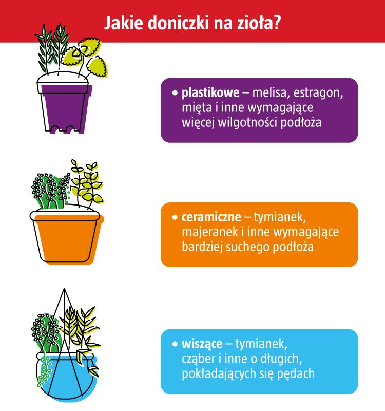 jakie zioła do montażu)